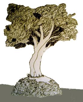 """""""Arbolito"""" / Dibujo original Mayo 2005 - Digitalización 2009 / El Salvador"""