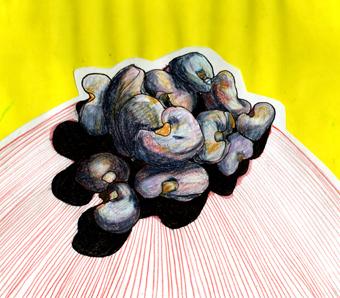 """""""Semillas de Marañón"""" / Dibujo-Plumón, Lápiz de Color, collage / San Salvador, ES - Mayo 2010"""